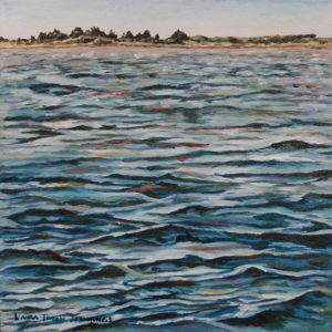 Sandy Neck Island
